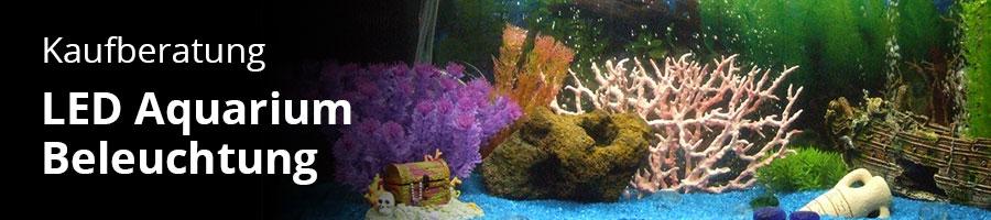 Kaufberatung für Aquarium Lampen