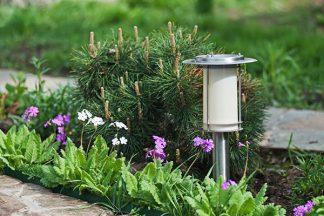 Weg beleuchtet im Garten