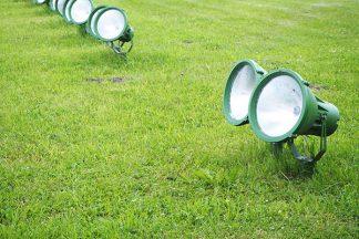 Spotlights im Garten